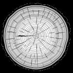 icone-bois-logo_ebenisterie-julie-pier-legros